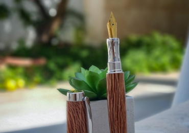 Pluma Estograica de Madera de Encina . Fountain Pen (Wood oak)